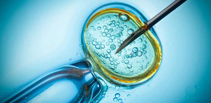 Zwanger worden met behulp van ivf? Ga naar het VUmc